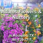 Adams Flowers and Nursery